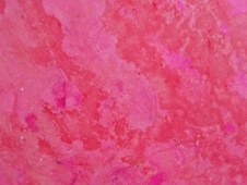 galerie-pink-lady